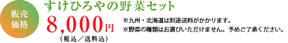 販売価格(税込/送料込)8,000円※九州・北海道は別途送料がかかります。※野菜の種類はお選びいただけません。予めご了承ください。